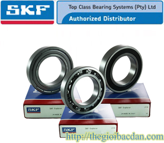 SKF 6219-2RS